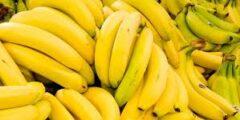 الموز و فوائده الكثيره