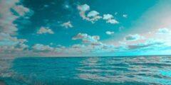 تقرير حول الانظمة البيئية المائية