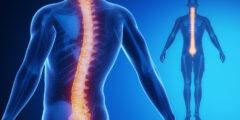 ما هو الحبل الشوكي و ما هي أسباب و أعراض الإصابة به و ما العلاج