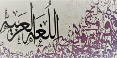 اختبار اللغة العربية للابتدائي